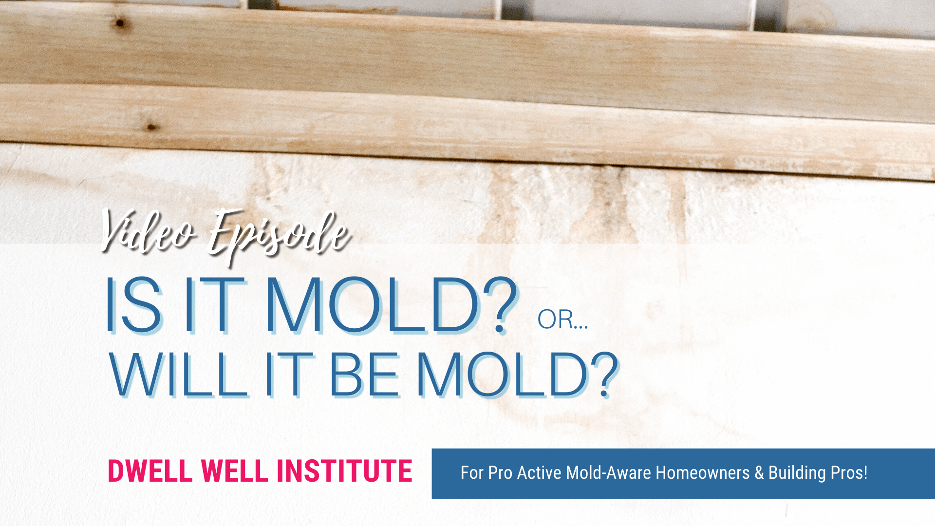 Could you have mold or a situation that will cause mold? Submit your photos for review by architect Cheryl Ciecko